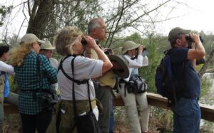 Birding Group Outing 1 10 20 Santa Ana