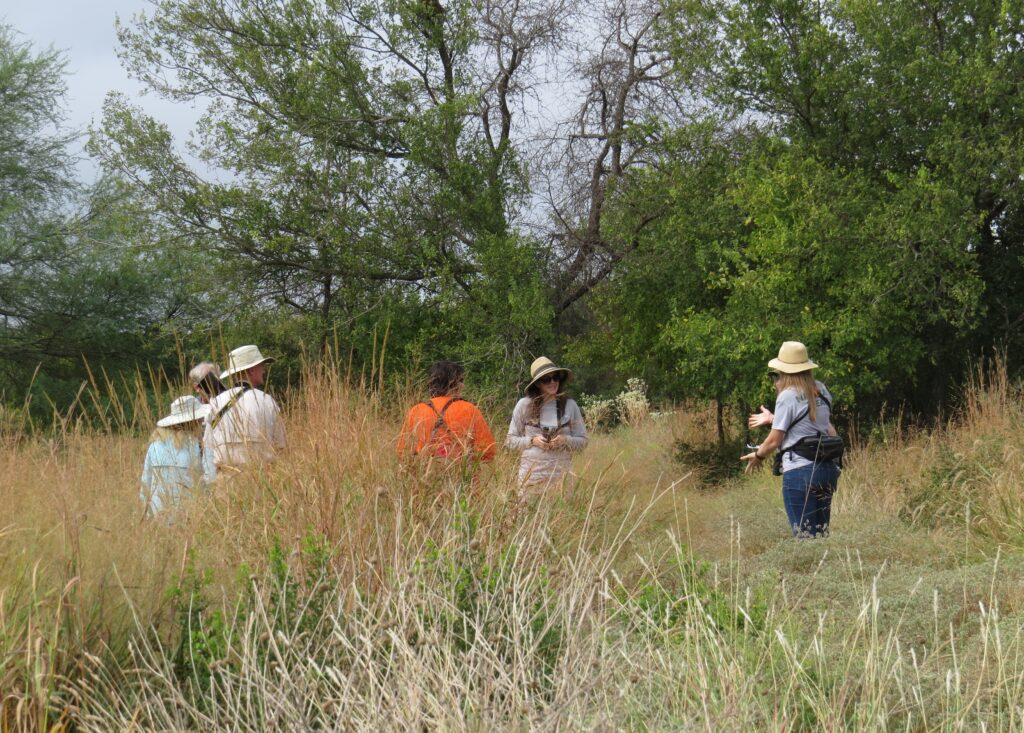 Butterfly Survey Team at Hardberger Park