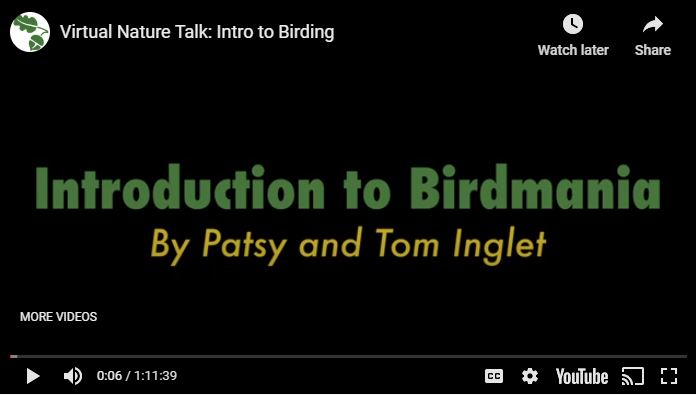 Intro to Birdmania