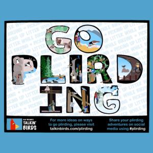 raybrowns-talkinbirds-goplirding-flyersquare