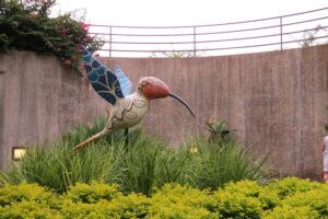 Hummingbird. BT
