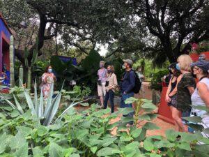 At the Frida Kahlo Oasis. PLP